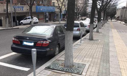 路边停车收费系统特点